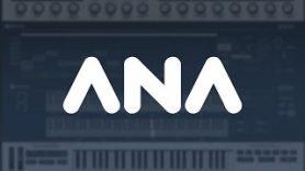 ANA 2 – Introducing Chord Memory Device