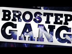 Brostep Gang Nasty Dubstep Serum Presets Drums Ableton Template - Brostep Gang | Nasty Dubstep Serum Presets, Drums & Ableton Template