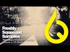 FL-Studio-Template-Talamanca-Freshly-Squeezed-Samples-Vol-1-Extract