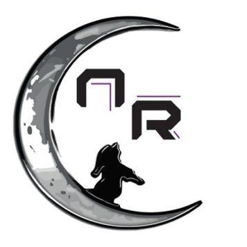 Nachtwandler Records - Tech House