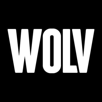 WOLV - Electro House