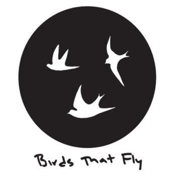 Birds That Fly - Techno
