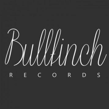 Bullfinch - Techno -
