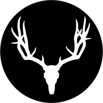 Cervidae Recordings - Minimal