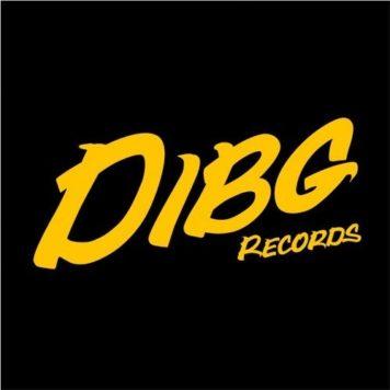 DIBG Records - Progressive House