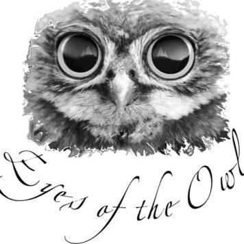 Eyes Of The Owl - Deep House