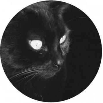 Gato Negro - Techno
