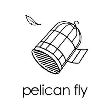 Pelican Fly - Electronica - Belgium