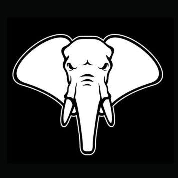 Young Elephants - House - Netherlands